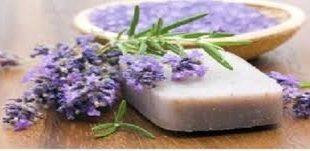 صابون سنتی شیر شتر